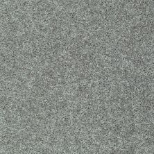 Shaw Floors Play Hard Gracious 00543_E0589