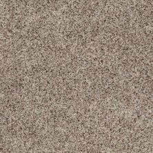 Shaw Floors Value Collections Tuscanet Mushroom 00702_E0608