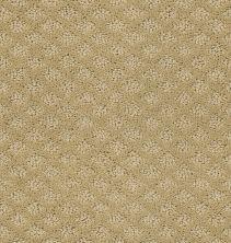 Shaw Floors Wolverine I Fieldstone 00105_E0616