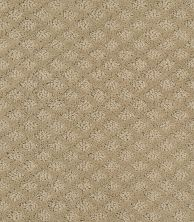 Shaw Floors Wolverine I Wool Skein 00111_E0616