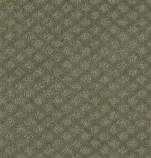 Shaw Floors Wolverine I Silver Sage 00310_E0616