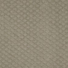 Shaw Floors Wolverine I Gray Flannel 00511_E0616