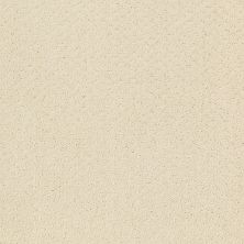 Shaw Floors Wolverine III Canvas 00103_E0618