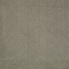 Shaw Floors Wolverine III Silver Sage 00310_E0618