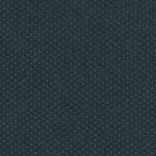 Shaw Floors Wolverine III Indigo 00411_E0618