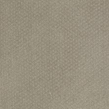 Shaw Floors Wolverine III Gray Flannel 00511_E0618
