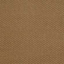 Shaw Floors Wolverine III Leather Bound 00702_E0618