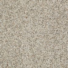 Shaw Floors Value Collections Anso Open 1 Macadamia 00100_E0623