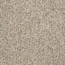 Shaw Floors Value Collections Anso Open 1 Vanilla Cream 00101_E0623