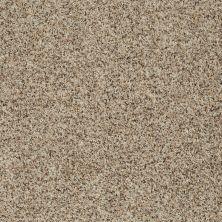 Shaw Floors Value Collections Anso Open 1 Sandbank 00102_E0623