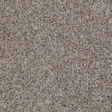 Shaw Floors Value Collections Anso Open 1 Deer Field 00702_E0623