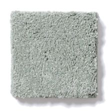 Shaw Floors Foundations Invitation Only II Sea Spray 00400_E0631