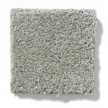 Shaw Floors Foundations Invitation Only II Silver Smoke 00500_E0631
