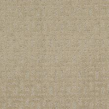 Shaw Floors Foundations Just Gorgeous Burlap 00700_E0637