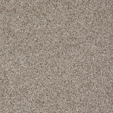 Shaw Floors Like No Other I Cobble Stone 00186_E0646