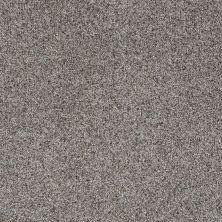 Shaw Floors Like No Other I Metro 00570_E0646