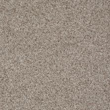 Shaw Floors Like No Other II Cobble Stone 00186_E0647