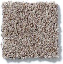Shaw Floors Like No Other II Cobble Stone 00186_E0647