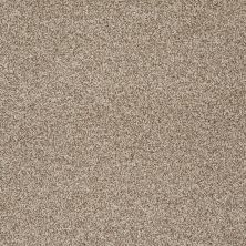 Shaw Floors Confident Smile Clay Stone 00108_E0649