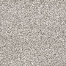 Shaw Floors Confident Smile Textured Canvas 00150_E0649