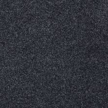 Shaw Floors Confident Smile Indigo 00451_E0649