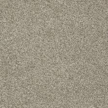 Shaw Floors Confident Smile Smooth Slate 00704_E0649