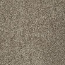 Shaw Floors My Choice I Flax 00751_E0650