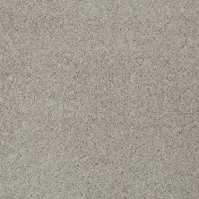 Shaw Floors My Choice II Textured Canvas 00150_E0651