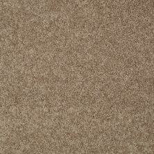 Shaw Floors My Choice II Saffron 00757_E0651