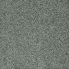 Shaw Floors My Choice III Silver Sage 00350_E0652