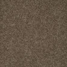 Shaw Floors My Choice III Weathered Wood 00759_E0652