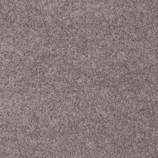 Shaw Floors My Choice III Sepia 00950_E0652