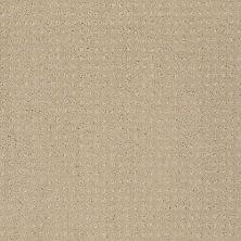 Shaw Floors My Choice Pattern Taffeta 00107_E0653