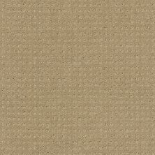 Shaw Floors My Choice Pattern Clay Stone 00108_E0653