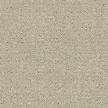 Shaw Floors My Choice Pattern Textured Canvas 00150_E0653