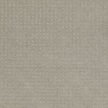 Shaw Floors My Choice Pattern Glaze 00154_E0653