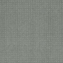 Shaw Floors My Choice Pattern Silver Sage 00350_E0653