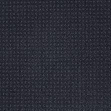 Shaw Floors My Choice Pattern Indigo 00451_E0653