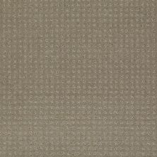 Shaw Floors My Choice Pattern Smooth Slate 00704_E0653