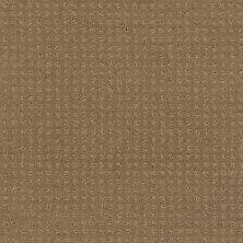Shaw Floors My Choice Pattern Cappuccino 00756_E0653