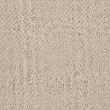 Shaw Floors Truly Relaxed Loop Clay Stone 00108_E0657