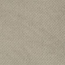 Shaw Floors Truly Relaxed Loop Smooth Slate 00704_E0657