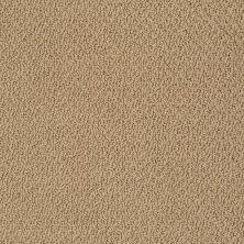 Shaw Floors Truly Relaxed Loop Honey Pot 00722_E0657