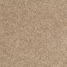Shaw Floors Cabinanet Solid Porcelain 00115_E0663