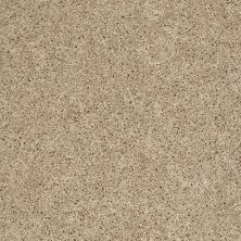 Shaw Floors Cabinanet Solid Antique Linen 00116_E0663