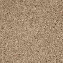 Shaw Floors Cabinanet Solid Prairie Dust 00117_E0663