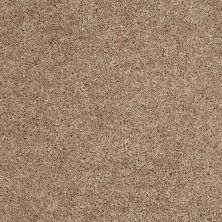 Shaw Floors Cabinanet Solid Sahara Buff 00701_E0663