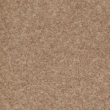 Shaw Floors Cabinanet Solid Saddle Tan 00710_E0663