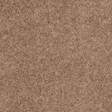 Shaw Floors Cabinanet Solid Vintage Tan 00724_E0663
