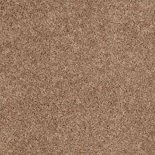 Shaw Floors Cabinanet Solid Vintage Tan 00724_E0663